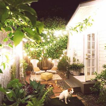 The Tiny Canal Cottage On Instagram Gnite From The Garden Gnomes intended for Ti...,  The Tiny Cana