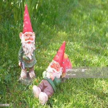 Two Garden Gnomes Photography ,